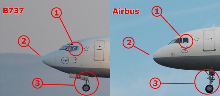 HOW WOULD YOU COMPARE THE AIRBUS A320 AGAINST THE BOEING 737?