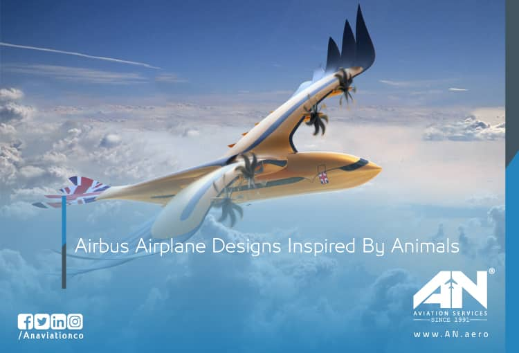 Airbus Airplane Designs Inspired By Animals