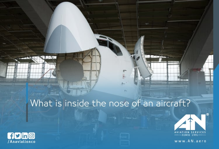 inside aircraft nose